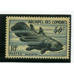 1954 COMORES FAUNA MARINA...